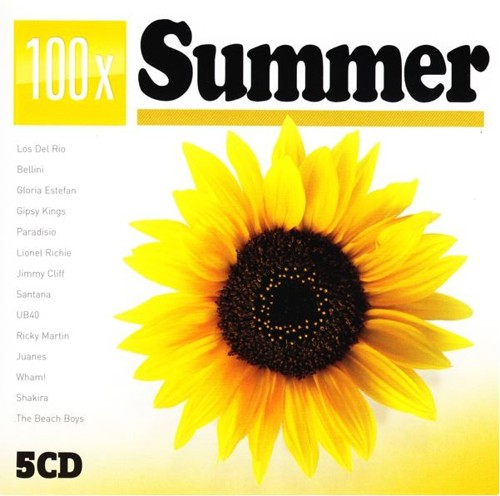 *      Various - 100 X Summer Hits - 5CD (CD)