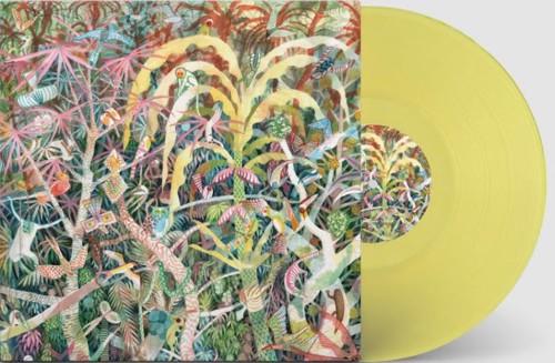 Dijf Sanders - Lichen EP (Yellow Vinyl) (LP)