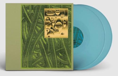 De Beren Gieren - Less Is Endless (Light Blue Vinyl) - 2LP (LP)